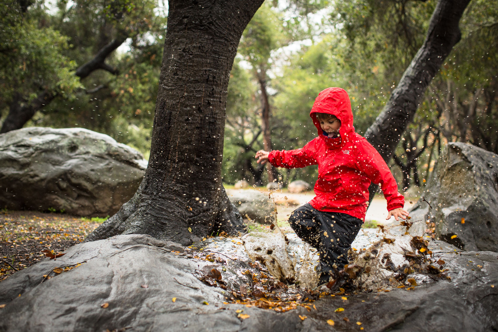 Boy Puddle Jumping in the Rain.  Santa Barbara, CA