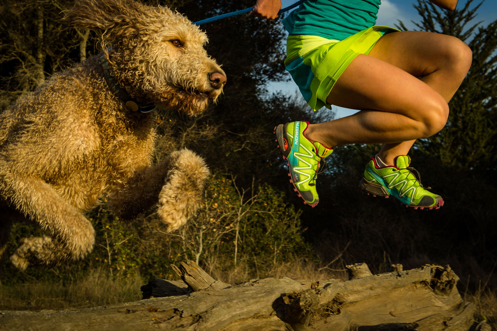 Woman Trail Running With Labradoodle